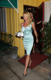 HQ celebrity pictures Nicollette Sheridan